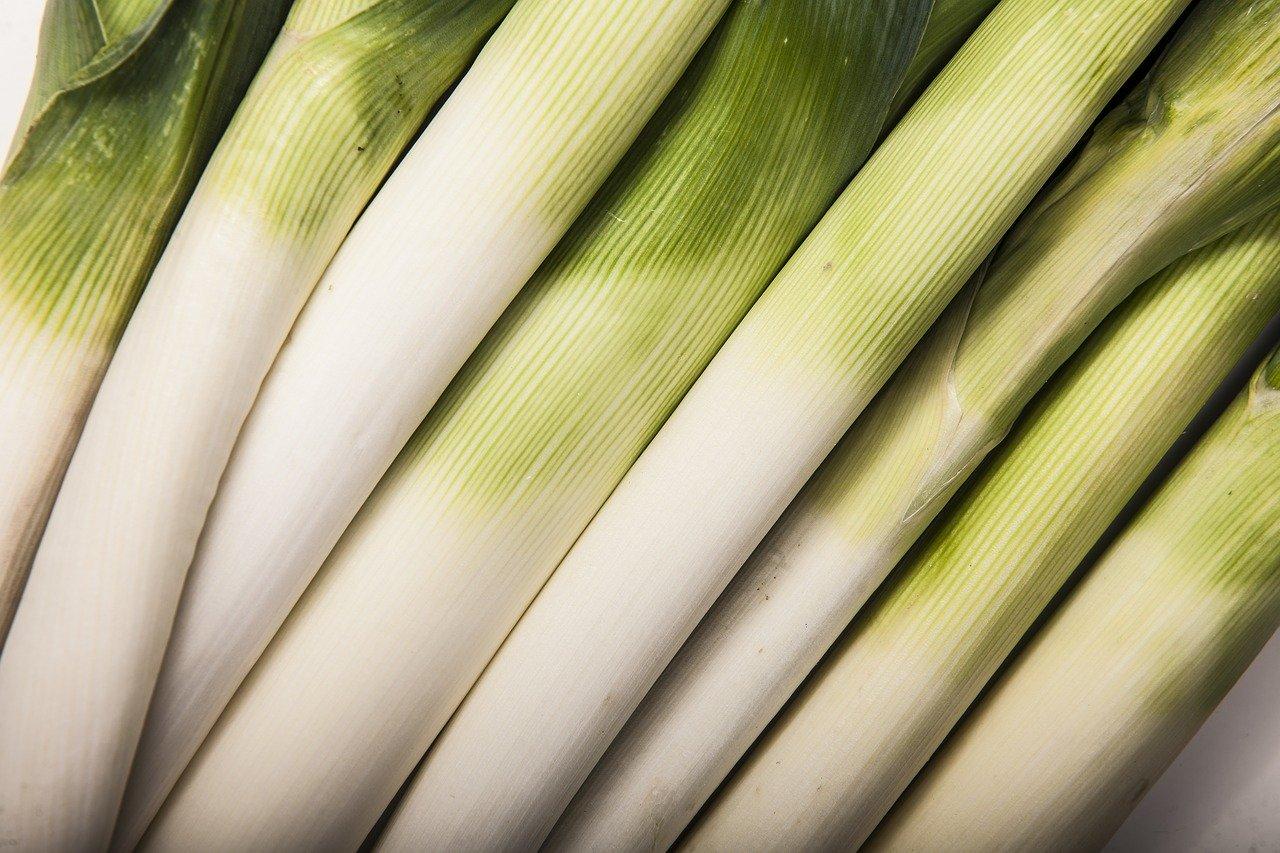 W jakiej kuchni znajdziemy najpyszniejsze pierogi wegańskie?